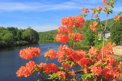 Shelburne Falls Photograph - Shelburne Falls Bridge Of Flowers Azelea by John Burk