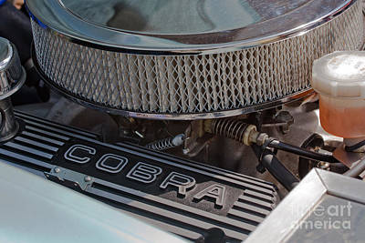 Photograph - Shelby Ac Cobra Engine by Terri Waters