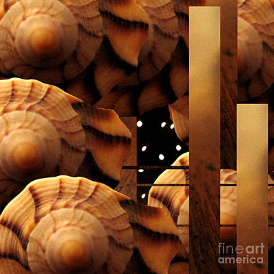 Photograph - Shell Abstract by Patricia Januszkiewicz
