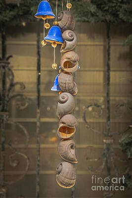 Hippy Photograph - Shell And Bell Wind Chime - Hdr Style by Ian Monk