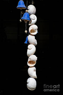 Wind Chimes Photograph - Shell And Bell Wind Chime by Ian Monk