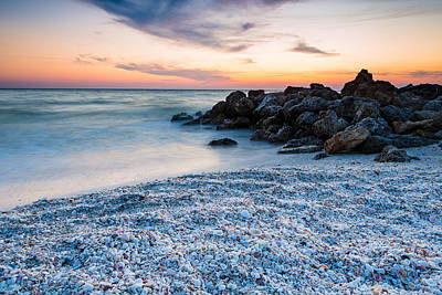Photograph - Shell Beach by Adam Pender