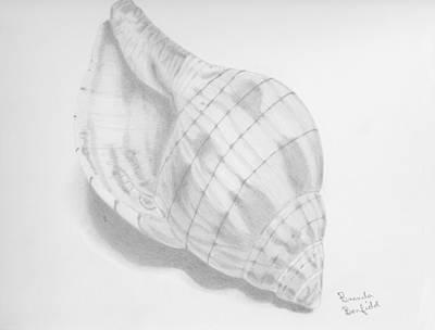 Shell Art Print by Brenda Bonfield