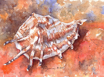 Spiny Painting - Shell by Claudia Hafner