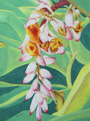 Art Print featuring the painting Shell Ginger by Margaret Saheed