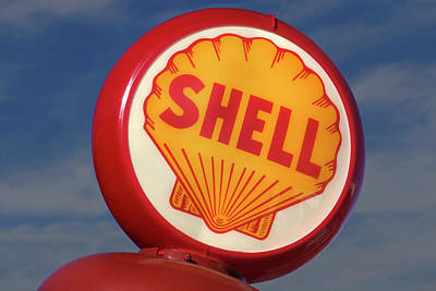 Shell Globe Print by Mike McGlothlen