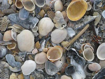 Shell Mosaic Art Print by Ellen Meakin