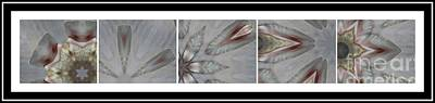 Pentaptych Photograph - Shell Shock Pink Pentaptych  by Barbara Griffin