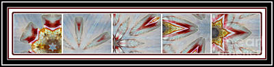 Pentaptych Photograph - Shell Shock Red Pentaptych by Barbara Griffin