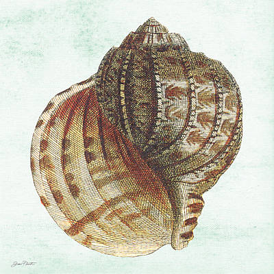 Digital Art - Shell Treasure-c by Jean Plout