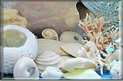 Shells In Pastels Print by Danielle  Parent