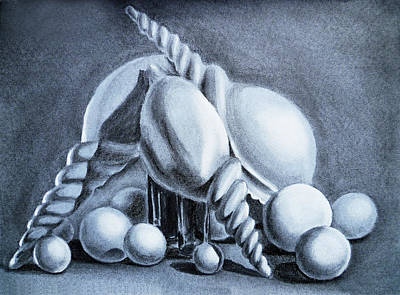 Still Life Drawings - Shells Shells And Balls Still Life by Irina Sztukowski