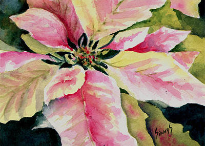 Poinsettias Painting - Shelly's Poinsettia by Sam Sidders