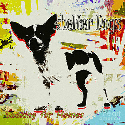 Digital Art - Shelter Dogs Looking For Homes by Ginette Callaway