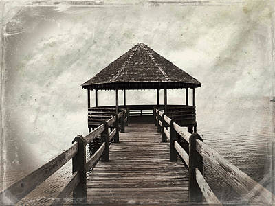Photograph - Shelter From The Storm by Paulette B Wright