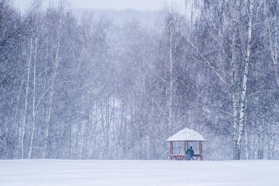 Park Scene Photograph - Shelter In The Storm - Featured 3 by Alexander Senin
