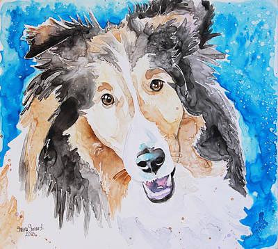 Shetland Sheepdog Painting - Sheltie by Shaina Stinard