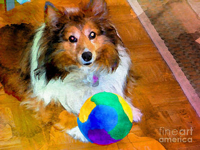 Photograph - Sheltie With Ball by Scott Hervieux