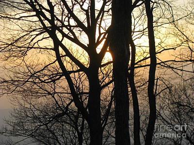 Photograph - Shenandoah 2 by Fred  Sheridan