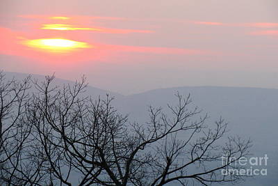 Photograph - Shenandoah 5 by Fred  Sheridan