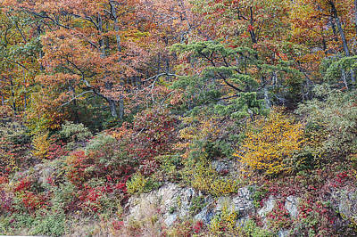 Photograph - Shenandoah Colors by Lee Kirchhevel