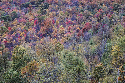Photograph - Shenandoah National Park 2 by Lee Kirchhevel