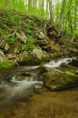 Brian Rock Photograph - Shenandoah Stream No. 2 by Brian Rock