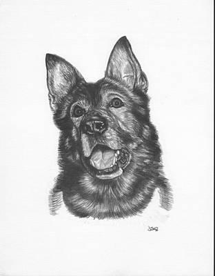 German Shepard Drawing - Shepherd by Jonathan W Brown