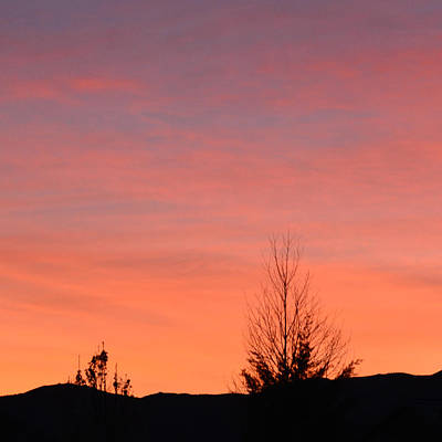 Photograph - Sherbet Sky by Brent Dolliver