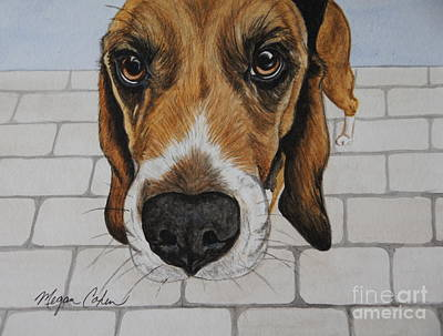 Watercolor Painting - Sherlock The Beagle by Megan Cohen