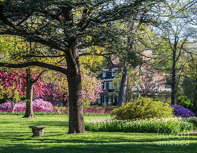 Photograph - Sherwood Gardens 6 by Chris Scroggins
