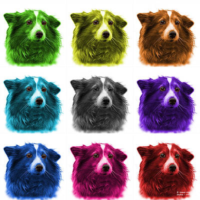 Mixed Media - Shetland Sheepdog Dog Art 9973 - Wb - M by James Ahn