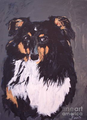 Painting - Sheltie Shetland Sheepdog by Shelley Jones
