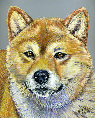 Shiba Inu Painting - Shiba Inu - Suki by Michelle Wrighton