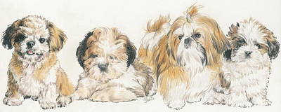 Shih Tzu Puppies Art Print by Barbara Keith