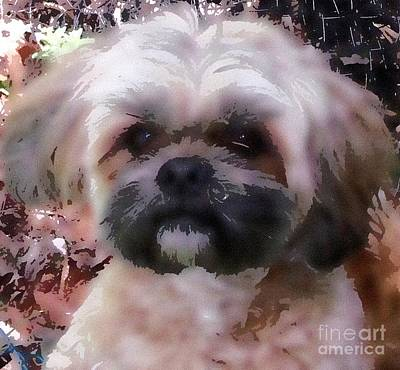 Shih Tzu Watercolor Art Print by Gail Matthews