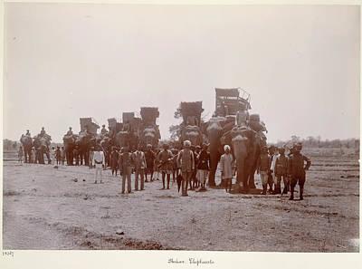 Deen Photograph - Shikar Elephants by British Library