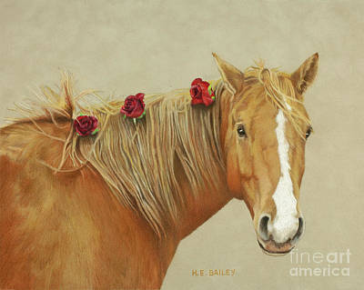 Drawing - Shiloh by Helen Bailey
