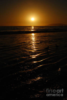 Photograph - Shimmering Sunset by Debra Thompson