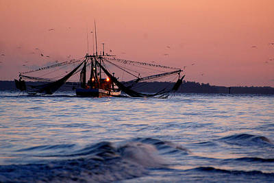 Photograph - Shimp Boat Returning To Port by Peter DeFina