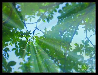 Shine Under Tree Art Print by Sky Skier