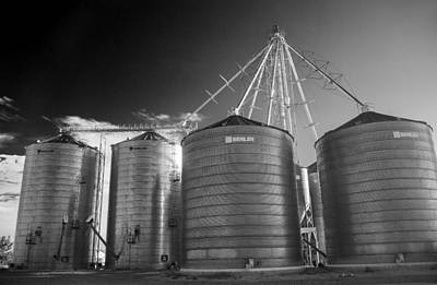 Photograph - Shining Silos by Morris  McClung