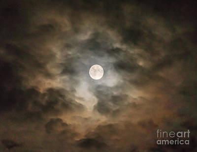 Photograph - Shining Through by Chuck Smith