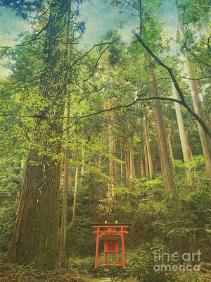 Photograph - Shinto Shrine Deep In The Forest by Beverly Claire Kaiya