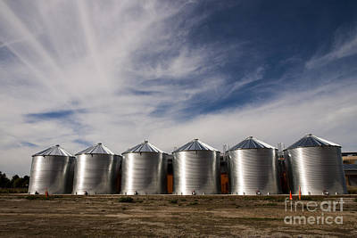 Shiny Silos Art Print by Juan Romagosa