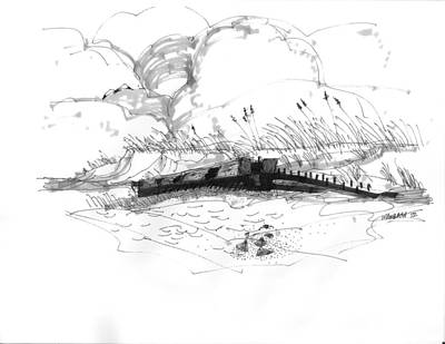 Shipwreck Exposed 1 Art Print