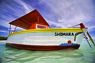Photograph - Shomara Of Aruba II by David Letts