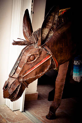 Photograph - Shop Donkey by Melinda Ledsome