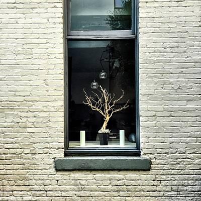 Grey Photograph - Shop Window by Julie Gebhardt