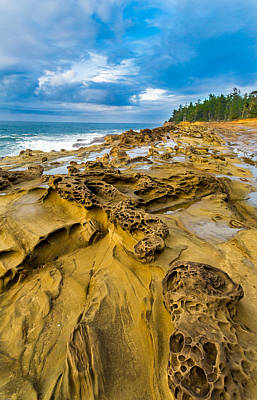 Oregon State Photograph - Shore Acres Sandstone by Robert Bynum
